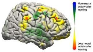 This image shows the changes that took place in the brain for all patients participating in the study using a brain-computer interface. Changes in activity were distributed widely throughout the brain. (Credit: Jeremiah Wander, UW)