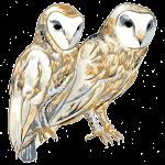 ghostbirdlogo[1]