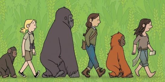 Primates-FI 2013